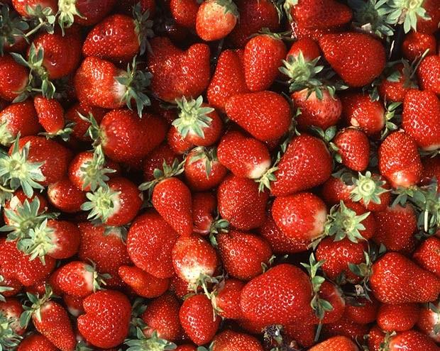 clinipam-plano-de-saude-morangos-reduzem-colesterol